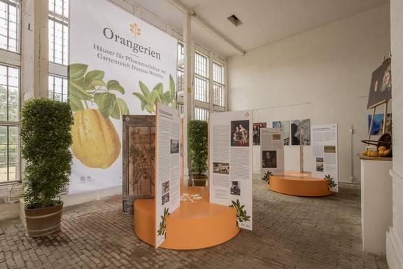 Ausstellung in der Orangerie Oranienbaum